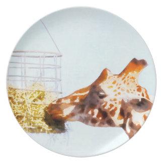 Girafe alimentant du panier aérien assiette