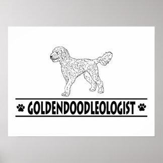 Goldendoodle humoristique