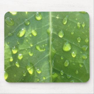 Gouttes de pluie sur une feuille tapis de souris