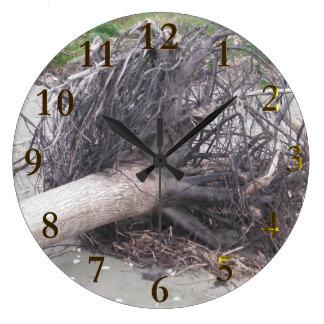 Grande Horloge Ronde aotearoa de la Nouvelle Zélande de plage
