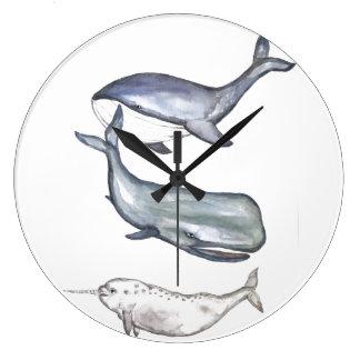 Grande Horloge Ronde Baleines, famille de baleines, baleine de bosse,