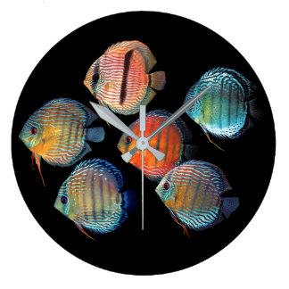 Grande Horloge Ronde Wild Discus fish