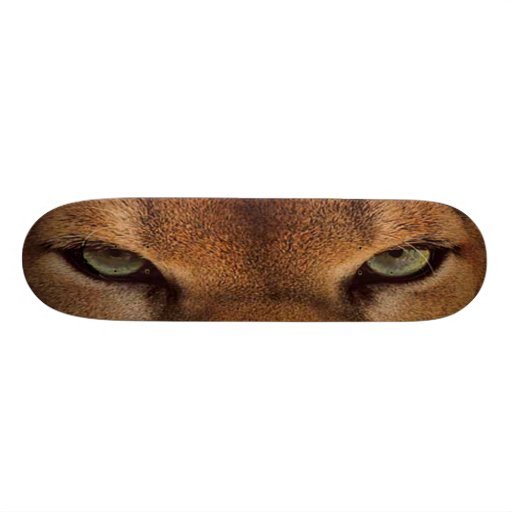 GRANDE montagne mauvaise de CAT SKATEBOARD-6 - pum