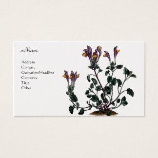 Grandiflora Scutellaria Visitekaartjes