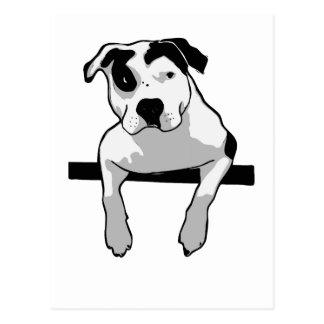 Graphique d'à l'os de pitbull cartes postales
