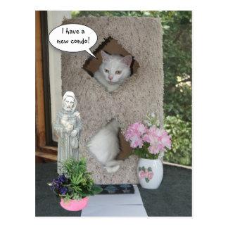 Grappige Kat heb ik Bewogen/Nieuw Adres Briefkaart