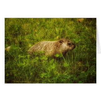 Groundhog dans une carte de voeux de champ