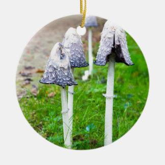 Groupez les champignons d'encre près du chemin ornement rond en céramique