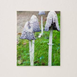 Groupez les champignons d'encre près du chemin puzzle
