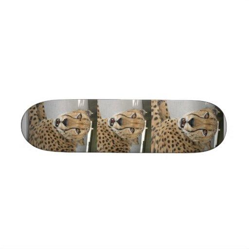 guépard animal skateboards personnalisés