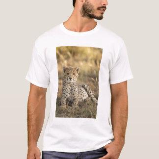 Guépard, jubatus d'Acinonyx, petit animal étendant T-shirt