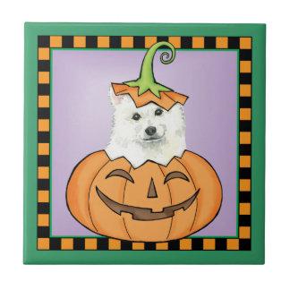 Halloween Eskie Carreau