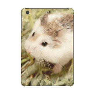 Hammyville - hamster mignon