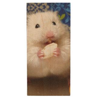 Hamster syrien pelucheux Kokolinka mangeant une Clé USB 2.0 En Bois