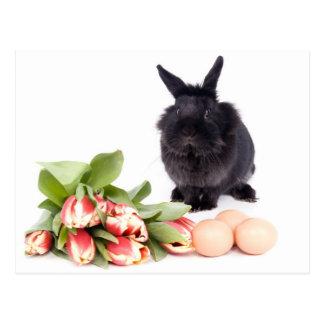 Happy Easter Carte Postale