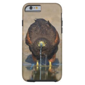 Harris colportent l'eau potable - cas de l'iPhone6 Coque Tough iPhone 6