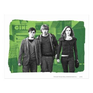 Harry, Ron, et Hermione 1 Carte Postale