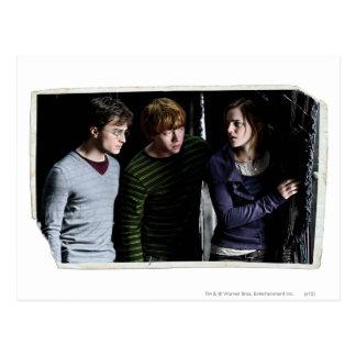 Harry, Ron, et Hermione 4 Carte Postale