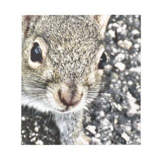 Haut étroit d'écureuil ! bloc-note