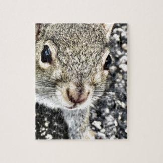 Haut étroit d'écureuil ! puzzle