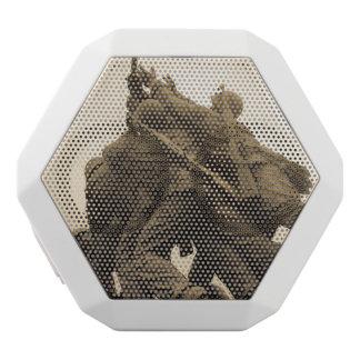 Haut-parleurs Blancs Sans-fils Mémorial d'Iwo Jima dans le Washington DC