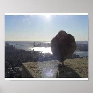 Haute au-dessus de New York City
