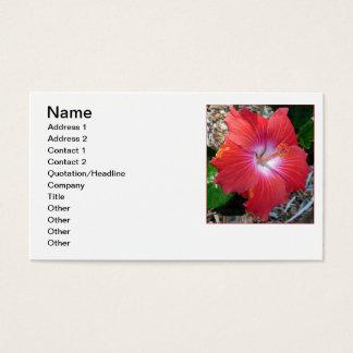 Hawaiiaanse Hibiscus Visitekaartjes