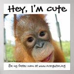 Hé, je suis orang-outan mignon de bébé