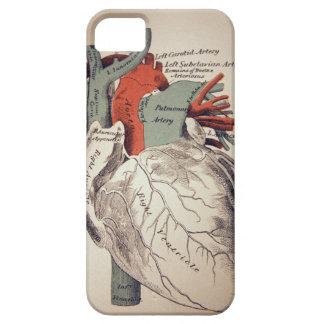Heb een iphoneHoesje van het Hart Barely There iPhone 5 Hoesje