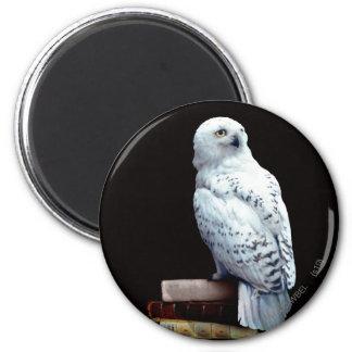 Hedwig sur des livres magnet rond 8 cm