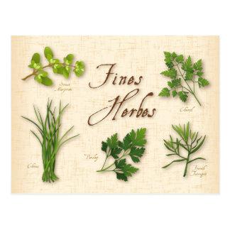 Herbes recette, persil, ciboulette, estragon de carte postale