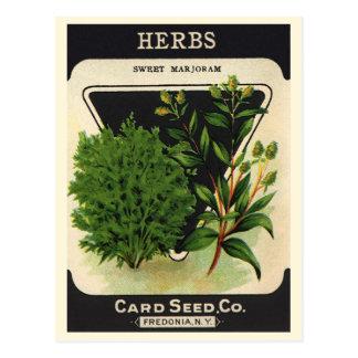 Herbes vintages de marjolaine douce d'art carte postale
