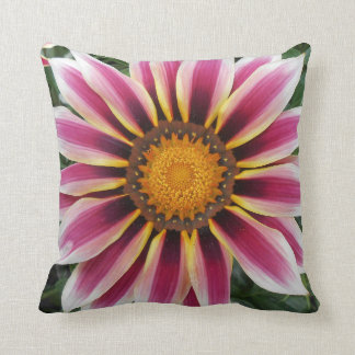 Hereford Coussin
