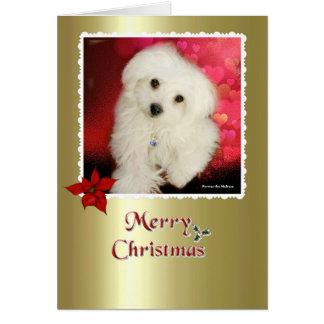 Hermes la carte de Noël maltaise