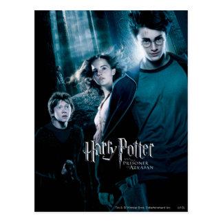 Het Bos van Harry Potter Ron Hermione In Briefkaart