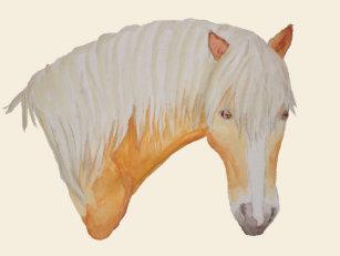 Haflinger paard kussens zazzle.be