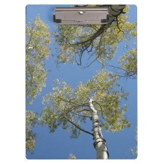 Het Klembord van de Bomen van de esp
