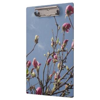 Het Klembord van de magnolia