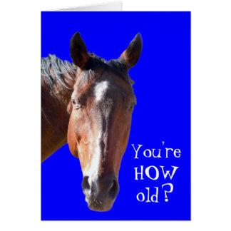 verjaardag man paard