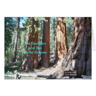 Het Nationale Park van Yosmite Briefkaarten 0