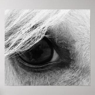 Het Oog van het paard in Zwart-wit Poster