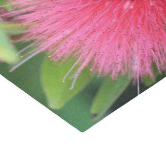 Het Papieren zakdoekje van de douane 10lb, Hete Tissuepapier