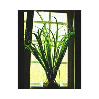 Het Plant van het venster Canvas Afdrukken