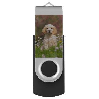 Het puppy van het golden retriever een leuke swivel USB 2.0 stick
