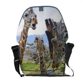Het Roddelen van giraffen de Zak van de Boodschapp Courier Bags
