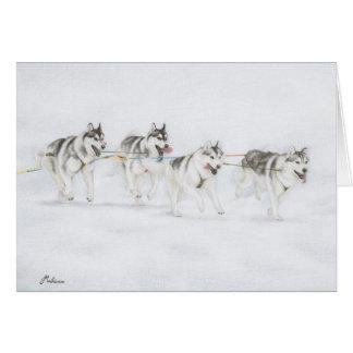 Het Siberische Rennende Team van de Schor Hond van Briefkaarten 0