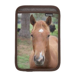 Het waakzame Bruine Close-up van het Paard