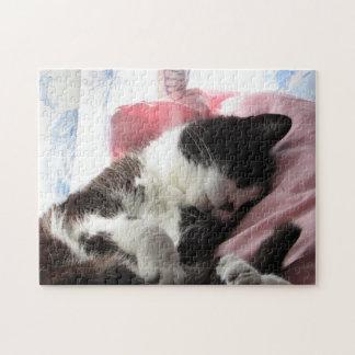 Heure pour un puzzle de petit somme de chat
