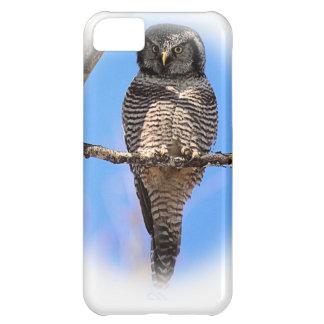 Hibou de faucon du nord 4A Coque iPhone 5C