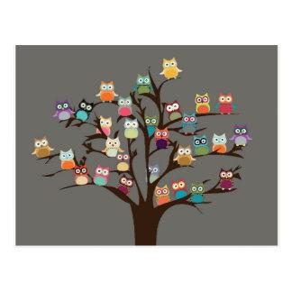 Hibou mignon sur l'arrière - plan de l'arbre | carte postale